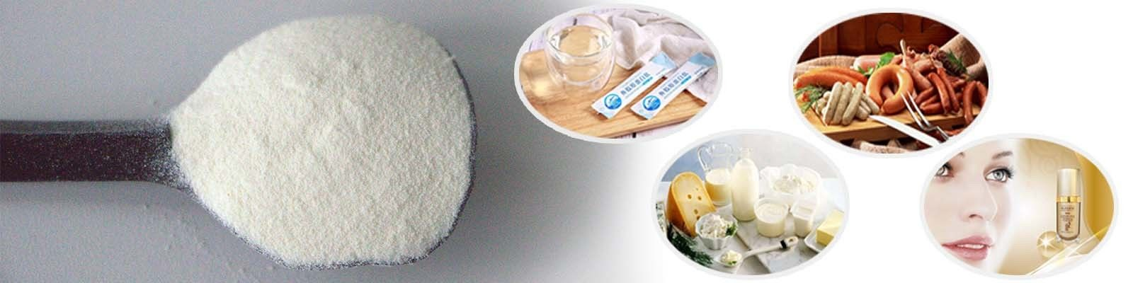 China best Edible Gelatin Powder on sales