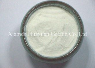 Water Soluble Pure Hydrolyzed Collagen Powder For Food , Nutrition Supplement