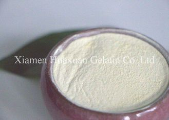 Professional Purity Soy Peptone Powder Light Yellow 99% Purity CAS 73049-73-7